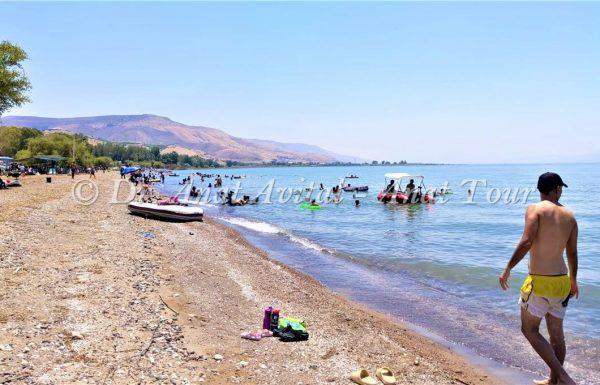 צליחת הכנרת | צליחת ספידו בכנרת ה-67 | אירוע השחייה העממי הגדול בישראל בשבת 31 באוקטובר, 2020