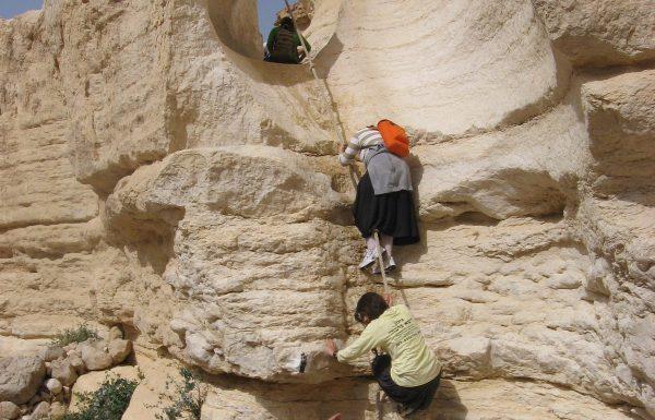 נחל צפית תחתון בצפון הערבה: מסלול טיול אתגרי למייטיבי לכת