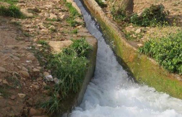 דרום בקעת הירדן:  3 טיולי מים וכיף שאתם מוכרחים לעשות