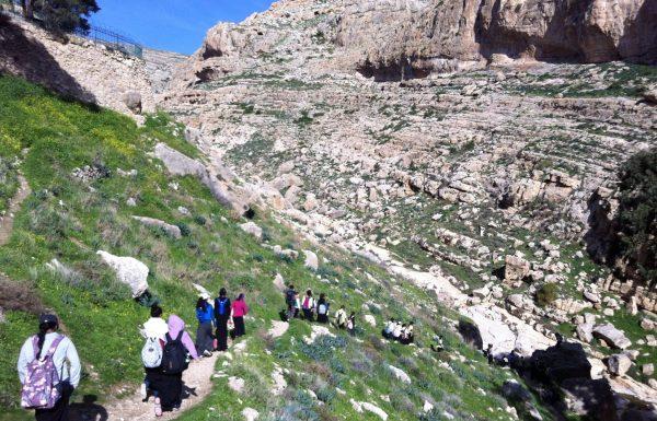 טיול שנתי מומלץ לתלמידים למדבר יהודה: נחל פרת, נחל אוג, שמורת עין גדי ומצדה
