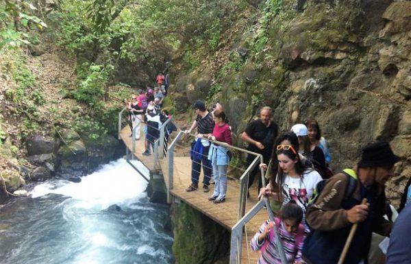שמורת בניאס -נחל חרמון מסלול ארוך: טיול מים ומפלים בצפון