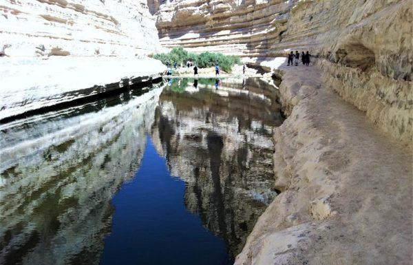 עין עבדת: נופי מים ומפלים בהר הנגב