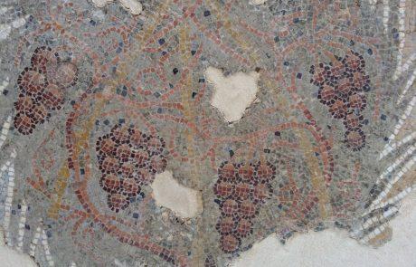 פסיפסי השומרון וסביבותיו מן התקופות הרומית המאוחרת והביזנטית – תיאורים צמחיים וחקלאיים ומגוון הפסיפסים