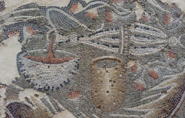 מקוריותם של התיאורים החקלאיים הייחודיים מפסיפס בית הכנסת השומרוני בסמארה