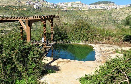 עיינות ענר: טיול מים קצר לכל המשפחה, שרשרת מעיינות יפים בגוש טלמונים