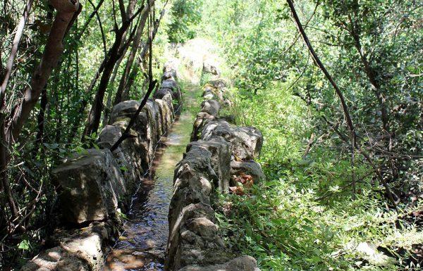 טיול בשמורת נחל עמוד: מסלול מעגלי מהכניסה לשמורה אל המעיינות וחזרה