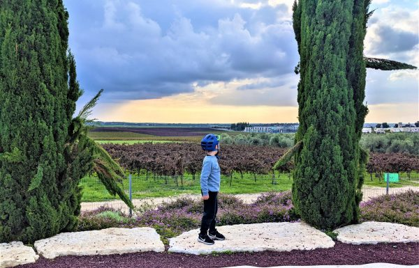 יער חולדה ובית הרצל: מסלולי טיול, אופניים וחניונים