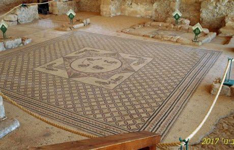 בית הכנסת העתיק של עין גדי: רצפת פסיפס מדהימה בטיול מדבר יהודה