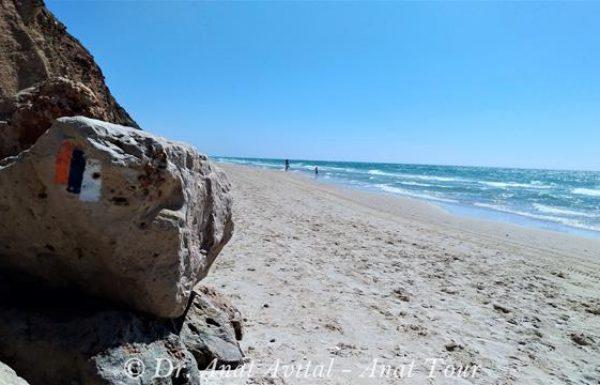 גן לאומי חוף בית ינאי: קטע של שביל ישראל במרכז