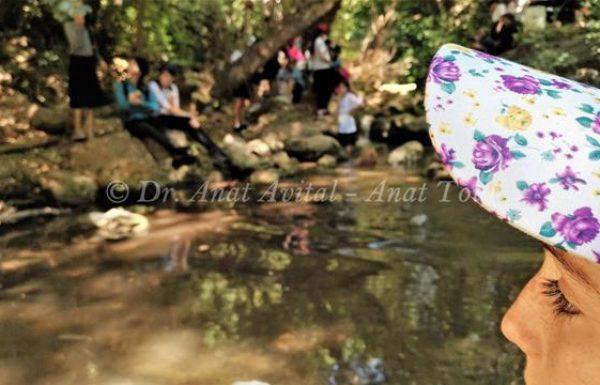 טיול מים מאתגר בנחל כזיב בגליל מערבי: הליכה במים וירוק בעיניים