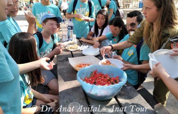 יום כיף וגיבוש לנוער מתנדבי אירגון לתת ביער להב, יוני 2017