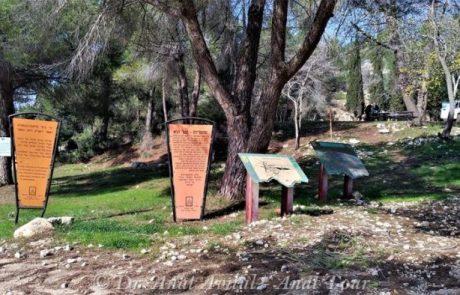 דרך דיפנבייקר – חניון פורצי הדרך – שלוחת שיירות – יער נווה אילן: טיול 4X4
