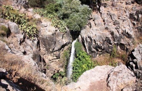 נחל גילבון קצר מעגלי: טיול מים מומלץ בצפון הירוק