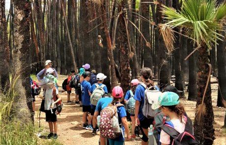 תאום טיולים מול מוקד טבע: לבתי ספר ולגופים נוספים