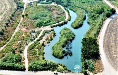 עמק המעיינות ליד בית שאן: מסלולי מים לכל המשפחה- נחל קיבוצים, עין שוקק, עין מודע, המסלול הרטוב