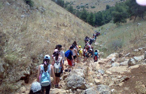 לטייל כמו נסיך: תוכנית מושלמת לטיולים לכל תלמיד ותלמידה בבית הספר