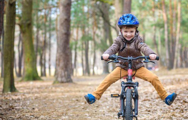 מסלולי אופניים עם ילדים: טיולי אופניים הכי יפים בצפון, במרכז ובדרום